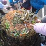 2013-12-03 10.37.12 compost 3